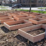 New planter boxes, from grant funds