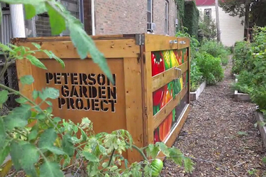 peterson-garden-project